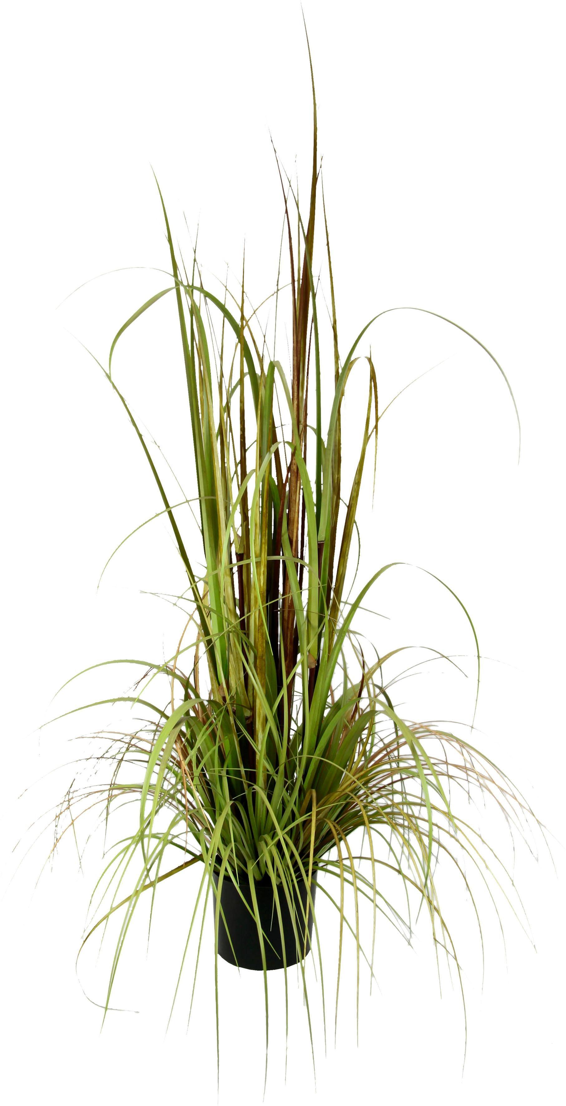I.GE.A. Kunstpflanze Gras im Topf bunt Künstliche Zimmerpflanzen Kunstpflanzen Wohnaccessoires