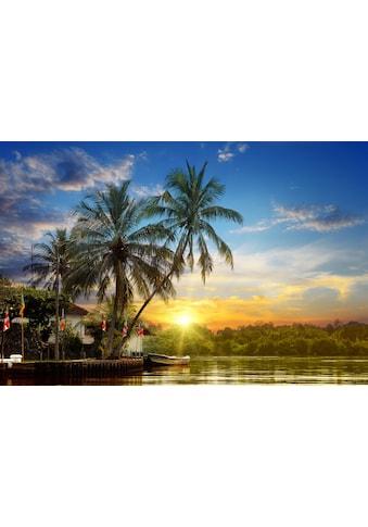 Papermoon Fototapete »Tropischer Palmen-Sonnenaufgang«, Vliestapete, hochwertiger... kaufen