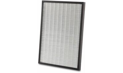 De'Longhi Kombifilter »AC 230«, EPA- und Aktivkohlefilter und einem TiO und UV Filter kaufen