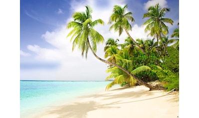 Papermoon Fototapete »Beach in the South Seas« kaufen