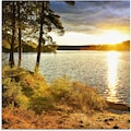 Artland Glasbild »Sonnenuntergang über See Algonquin Park«, Sonnenaufgang & -untergang, (1 St.)