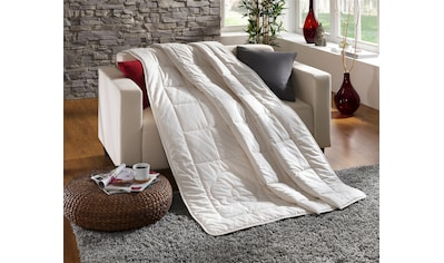 Baumwollbettdecke, »Baumwolldecke Comfort«, Dreams, Füllung: 100% Baumwolle, Bezug: 100% Baumwolle kaufen