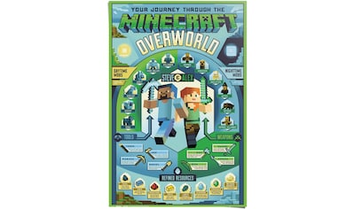 Reinders! Poster »Minecraft Overworld«, (1 St.) kaufen