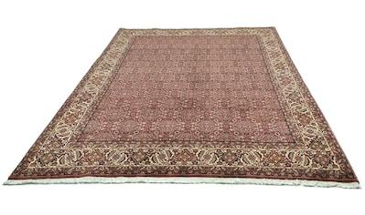 morgenland Wollteppich »Bidjar Teppich handgeknüpft rot«, rechteckig, 14 mm Höhe kaufen