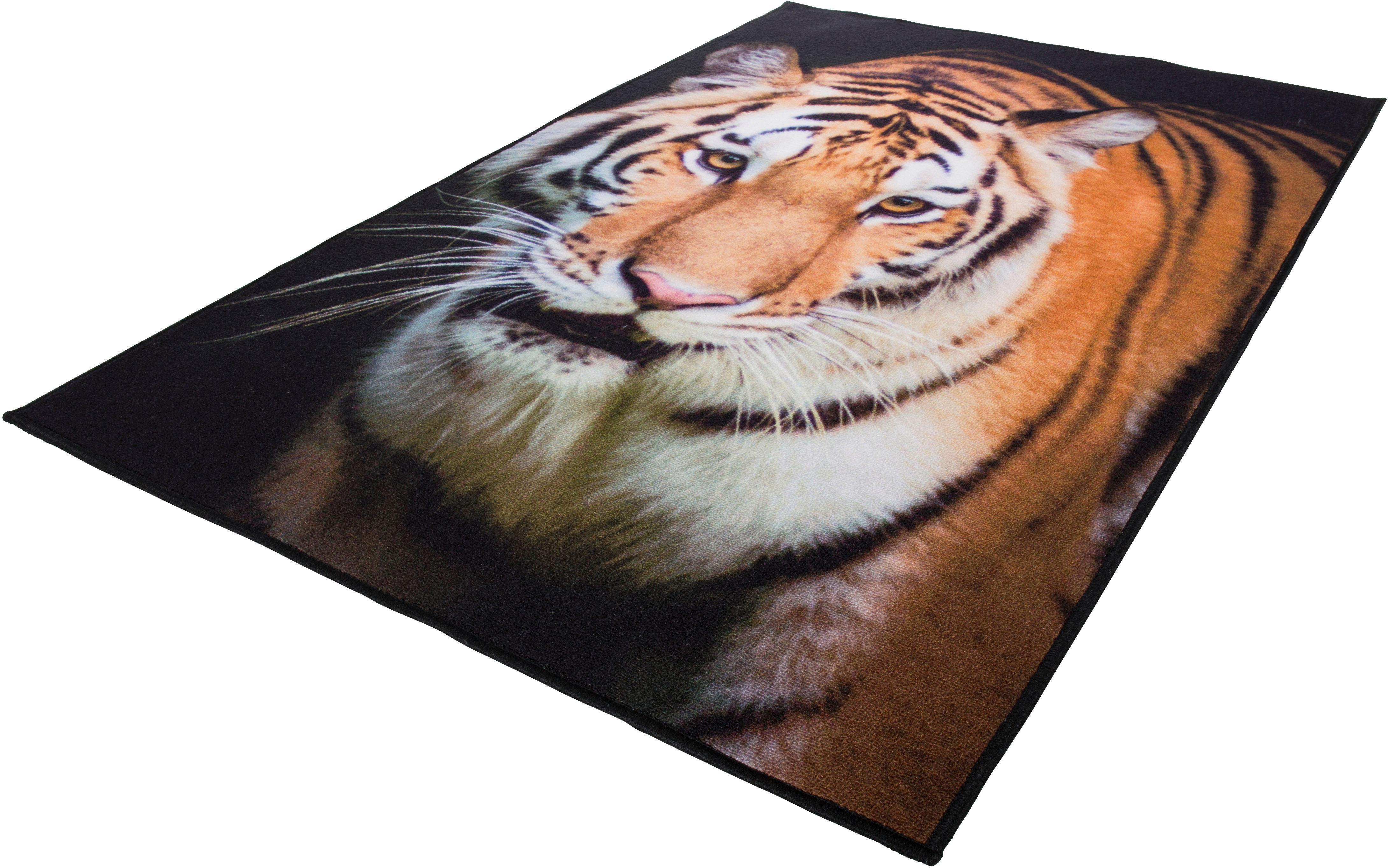 Andiamo Teppich Tiger, rechteckig, 4 mm Höhe braun Kinder Bunte Kinderteppiche Teppiche