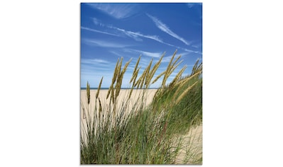 Artland Glasbild »Blühendes Strandgras«, Strand, (1 St.) kaufen