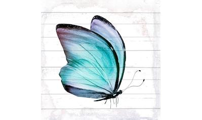 queence Holzbild »Schmetterling«, 40x40 cm kaufen
