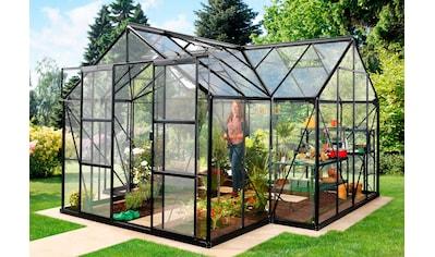 VITAVIA Gewächshaus »Sirona «, BxTxH: 381x381x254 cm, schwarz, 3 mm, mit Fundamentrahmen kaufen
