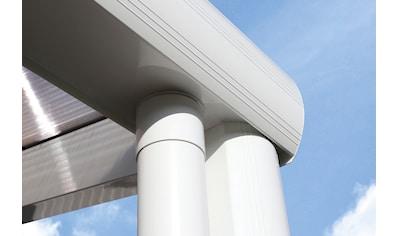 Skanholz Terrassendach »Genua«, 434 cm Breite, verschiedene Tiefe kaufen