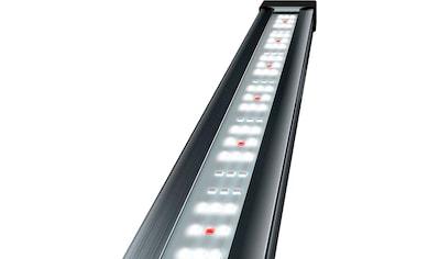 Tetra,LED Aquariumleuchte»Tetronic LED ProLine 580«, kaufen