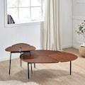 andas Couchtisch »Lyra«, 2er Set, Tischplatte aus schönem Furnierholz, Gestell aus Metall, zwei ineinander integrierbare Couchtische