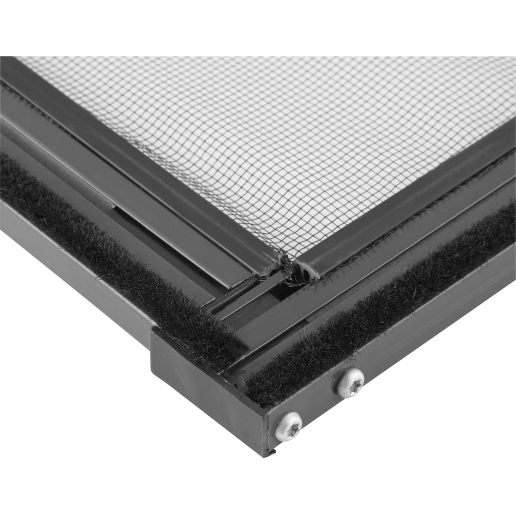 hecht international Insektenschutz-Fenster »MASTER SLIM«, anthrazit/anthrazit, BxH: 150x160 cm