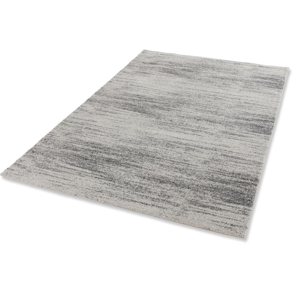 Teppich, »Savona 201«, ASTRA, rechteckig, Höhe 20 mm, maschinell gewebt