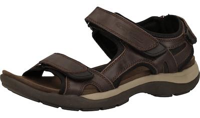 camel active Sandale »Leder« kaufen