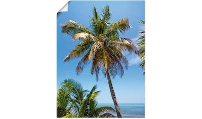 Artland Wandbild »Florida Keys Palme & Ozean«, Bäume, (1 St.), in vielen Größen &... kaufen