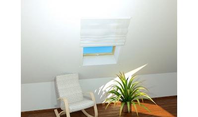 HECHT Insektenschutz - Dachfenster - Rollo »BASIC«, weiß/weiß, BxH: 110x160 cm kaufen