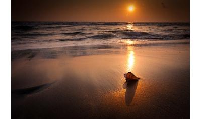 Papermoon Fototapete »Tropischer Strand Sonnenuntergang«, Vliestapete, hochwertiger... kaufen