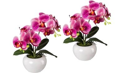 Creativ green Kunstpflanze (2 Stück) kaufen