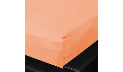BETTWARENSHOP Spannbettlaken »Multi-Stretch«, sehr elastisch und formstabil kaufen