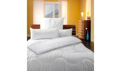 KBT Bettwaren Microfaserbettdecke »Body Soft Steppdecke«, warm, (1 St.) kaufen