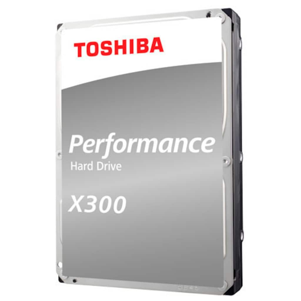 Toshiba HDD-Festplatte »X300 Performance 10TB Kit«, Bulk
