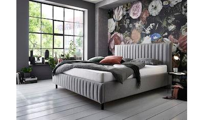 ATLANTIC home collection Polsterbett, mit Lattenrost und Bettkasten kaufen