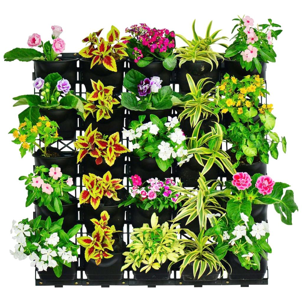 UPP Blumentopf »Wand-Garten«, mit Bewässerungssystem, 2x3 Töpfe