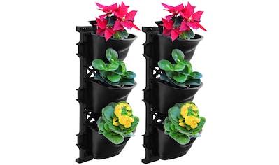 UPP Blumentopf »Wand-Garten«, mit Bewässerungssystem, 2x3 Töpfe kaufen