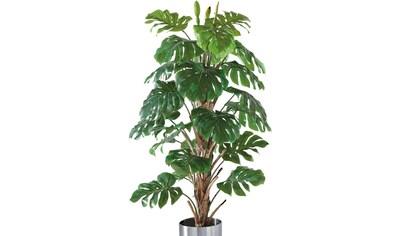 Schneider Kunstpflanze »Philo-Baum« kaufen