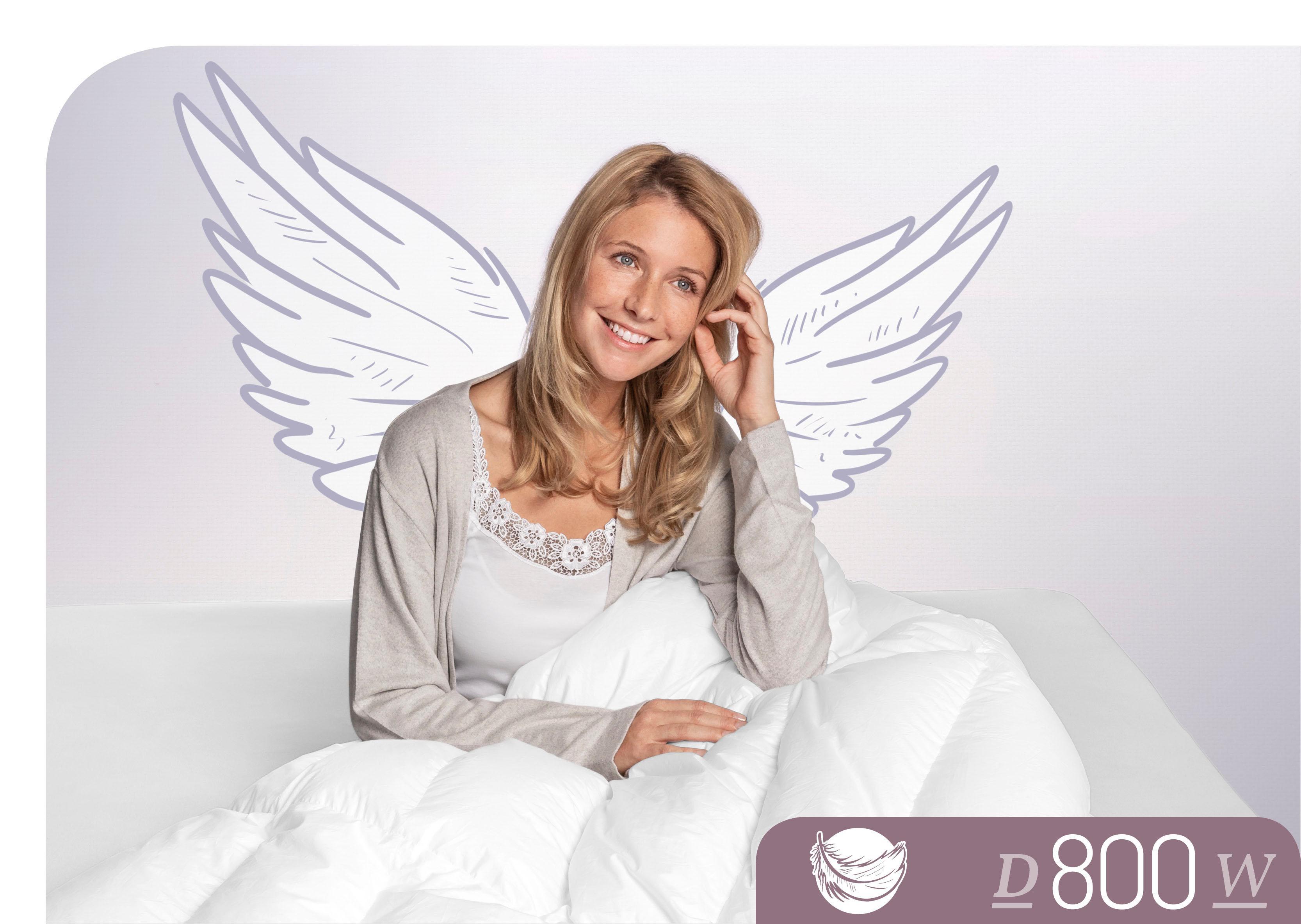 Daunenbettdecke D800 Schlafstil warm Füllung: 100% Gänsedaunen Bezug: 100% Baumwolle
