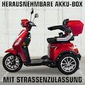 Rolektro Elektromobil »Rolektro E-Trike 25 V.3«, 1000 W, 25 km/h, (mit Topcase)