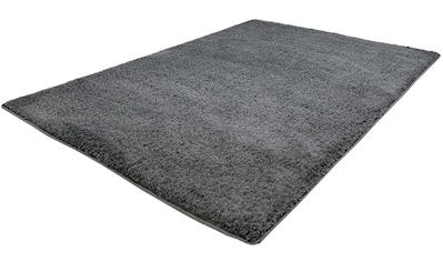 Carpet City Hochflor-Teppich »Softshine 2236«, rechteckig, 30 mm Höhe, besonders weich durch Microfaser, Wohnzimmer kaufen