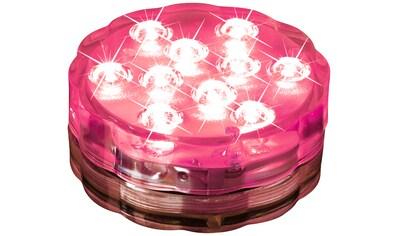 LED Dekolicht »easy!maxx Lichterzauber« kaufen