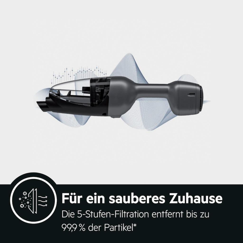 AEG Akku-Hand-und Stielstaubsauger »QX9-1-UO«, mit Power Softrolle, PetProPlus-Elektrosaugbürste und weiterem Zubehör