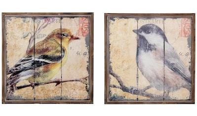HOFMANN LIVING AND MORE Bild »Vogel«, (Set), Tiermotiv (Set, 2 St.) kaufen
