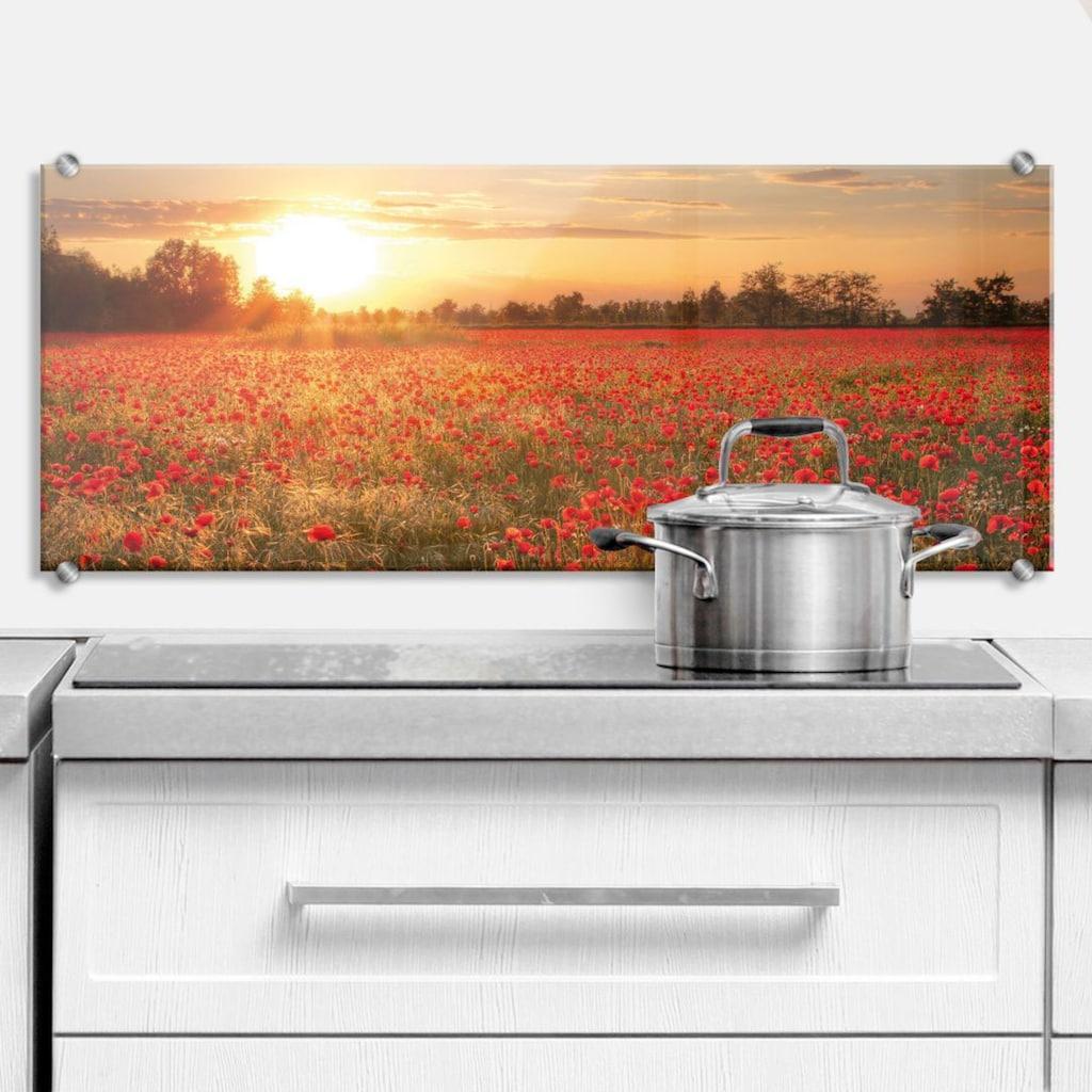 Wall-Art Küchenrückwand »Mohnfeld im Sonnenuntergang«