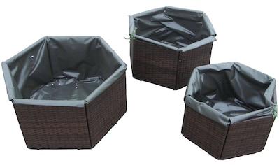 MERXX Pflanzkübel »Hexagon«, versch. Größen kaufen