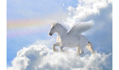 Papermoon Fototapete »Pegasus in the Clouds« kaufen