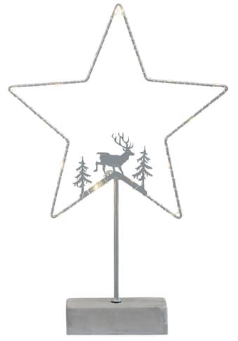 my home LED Stern »Timon«, 1 St., Warmweiß, Weihnachtsstern, Gestell mit 15 warmen... kaufen