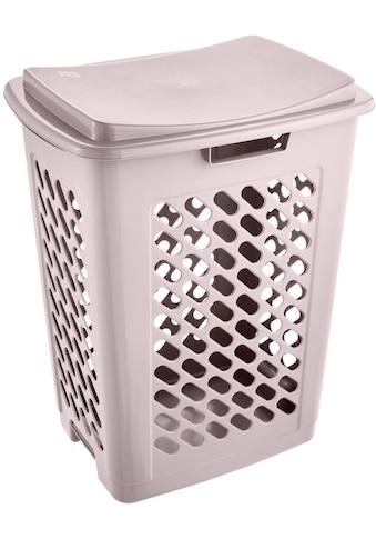 keeeper Wäschebox »piet« (1 Stück) kaufen
