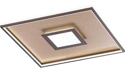 FISCHER & HONSEL LED Deckenleuchte »Zoe«, LED-Board, 1 St., LED Deckenlampe kaufen