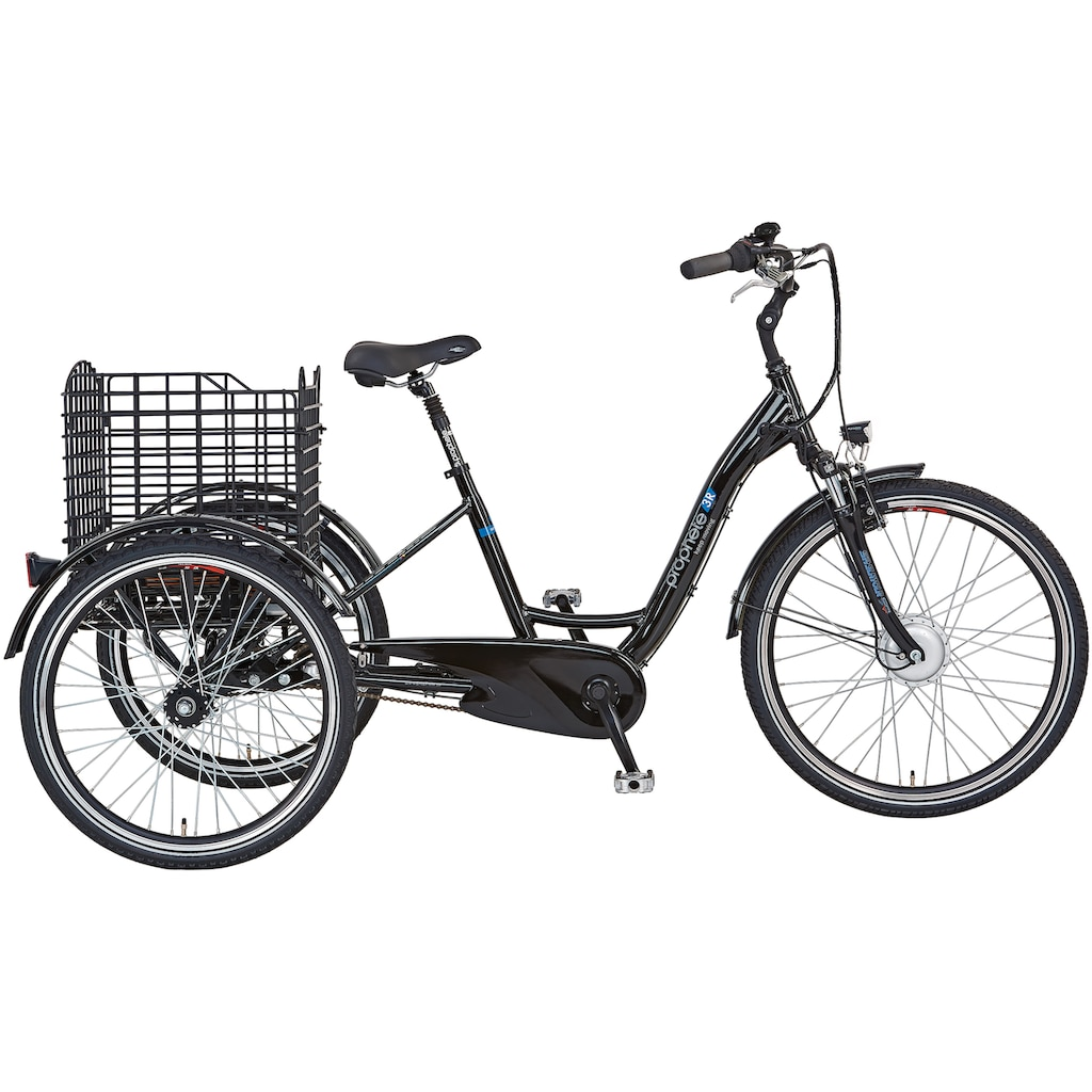 "Prophete E-Bike »CARGO 3R E-Bike 24""/26""«"