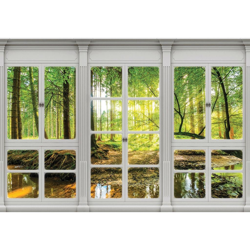 Consalnet Vliestapete »Sonnenwald Fensterblick«, verschiedene Motivgrößen, für das Büro oder Wohnzimmer