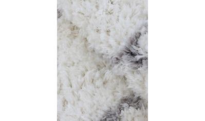 carpetfine Hochflor-Teppich »Eddy«, rund, 30 mm Höhe, Mit Fransen, Wohnzimmer kaufen