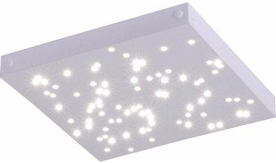 Paul Neuhaus Deckenleuchte »UNIVERSE«, LED-Modul, Neutralweiß-Warmweiß-Tageslichtweiß-Warmweiß, SATELLITE-(Ergängungs-Panel zum MASTER), inklusive festverbauten LED-Leuchtmitteln, inklusive 60 cm Kabel zum Verbinden von weiteren Leuchten kaufen