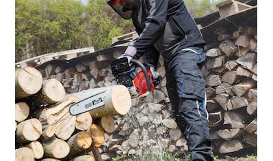 SCHEPPACH Benzin - Kettensäge »CSH56«, 51 cm Schwertlänge kaufen