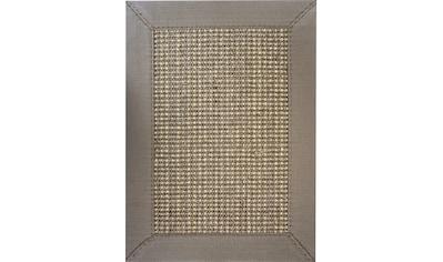 Sisalteppich, »Santos«, ASTRA, rechteckig, Höhe 6 mm, maschinell gewebt kaufen