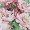 queence Holzbild »Rosa Blüten«, 40x40 cm