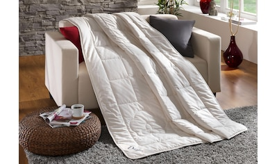 Dreams Baumwollbettdecke »Baumwolldecke Classic«, leicht, Füllung 100% Baumwolle, Bezug 100% Baumwolle, (1 St.), sehr gute Atmungsaktivität und optimale Feuchtigkeitsregulierung kaufen