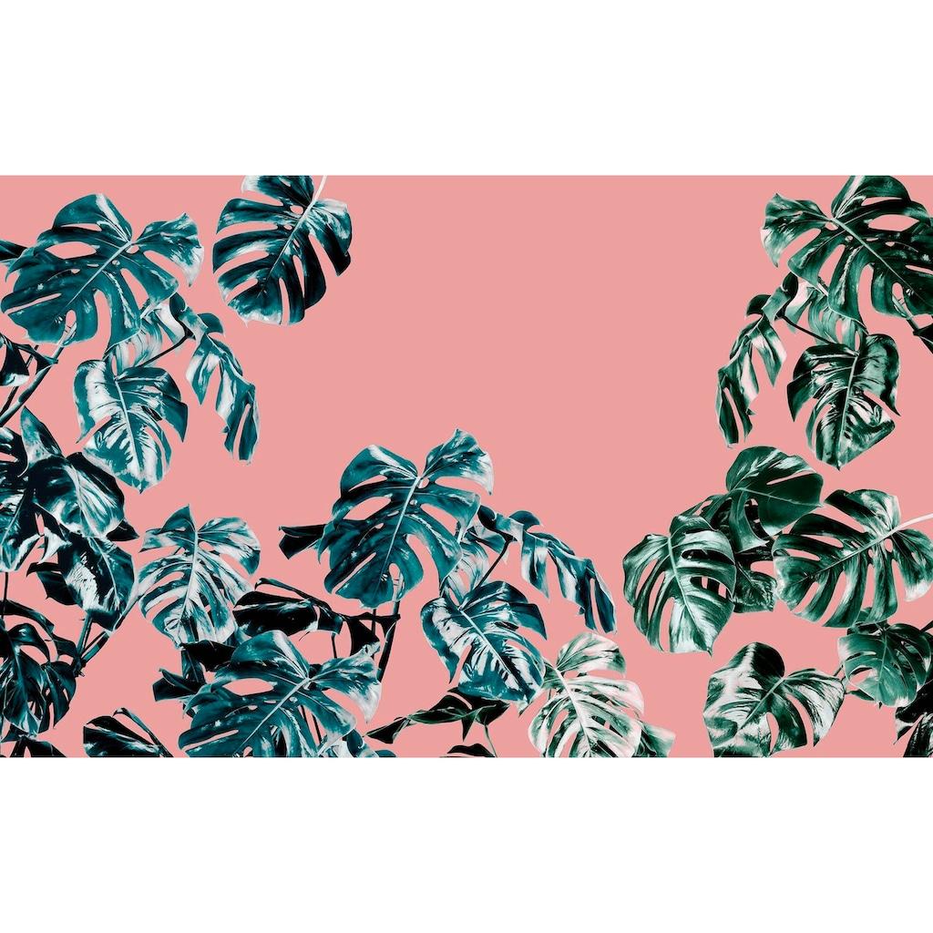 Komar Vliestapete »Pure Monstera Rosé«, naturalistisch